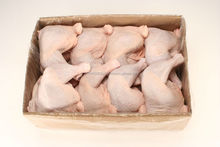 Chicken leg quarter from USA, Bulk Processed Chicken Feet and paws