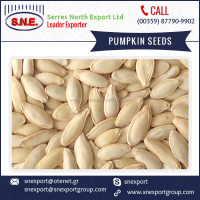 100% Original Lady Nail Pumpkin Seed at Cheap Price