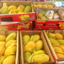 Fresh Farm mangoes Honey Mangoes Pakistani Honey mangoes