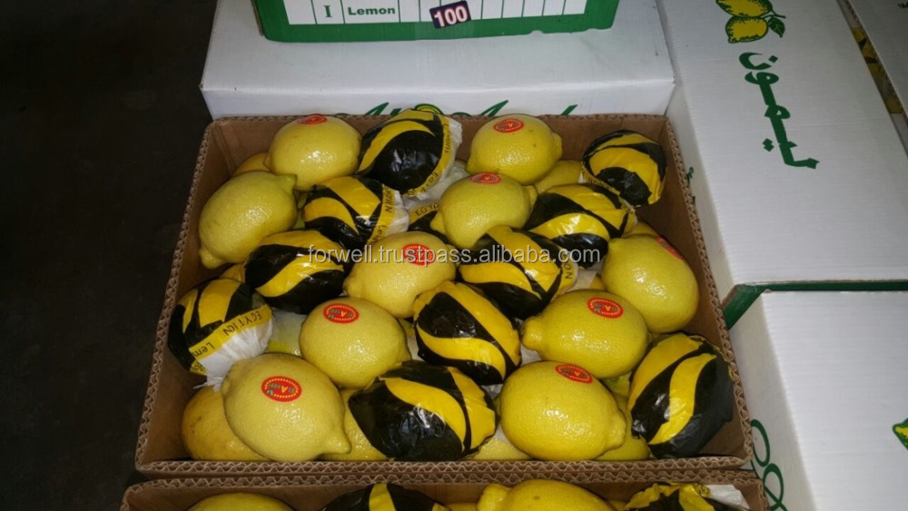 different types of lemon from egypt with high quality