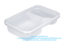 plastic Boxes 250 g 2 channels, size 12.2X18.3X4.6 cm, white, food, more.or Custom Molded Plastics, Plastic Injection Molding