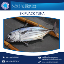 Canned Skipjack Tuna with No Added Chemicals or Preservatives