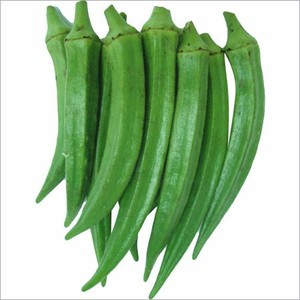 hot selling Fresh Vegetables fresh Okra , Ladyfinger , bhindi from (Naqshbandi Enterprises) Pakistan