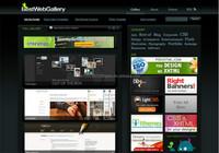Website design and development ecommerce B2B online shop