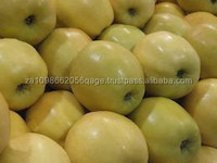 Top Golden Delicious Apple