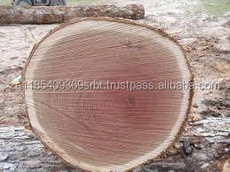 Hard Wood, Dabema, Tali, Okan, Ekop-beli, Doussie, Iroko, Padouk, Sipo, Sapelli wood logs/ sawn timber