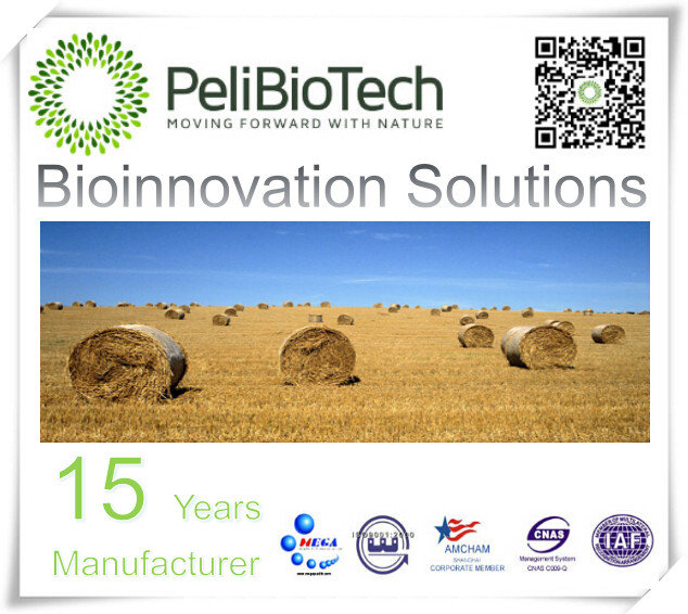 biosolutions used producing starch-based and cellulosic ethanol, biodiesel, and biogas