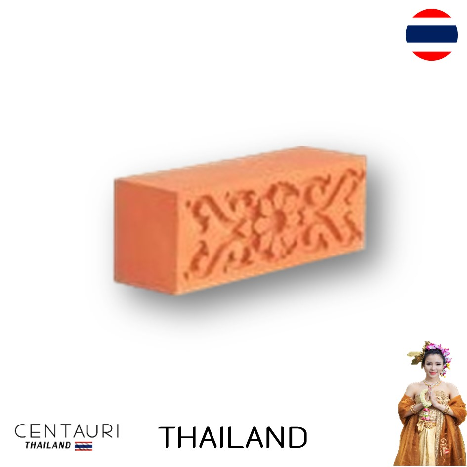 body and Matt 16x6x5 cm block new Brick color Solide Thai clay exterior bricks and Terracotta tiles from Thailand