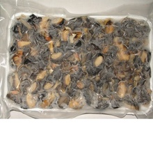 Dried frozen Snail meat for sale