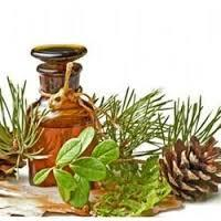 Pure & Natural Pine Essential Oil (Pinus silvestris sibirics) with high quality