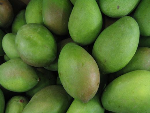 Fresh Green Mangoes for sale