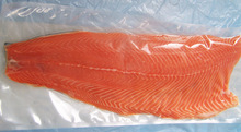 Atlantic fresh salmon fish, frozen salmon Fish fillet