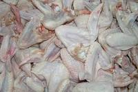 Wholesale Halal Frozen Chicken Wings Turkish brand