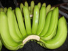 Green Fresh Banana for Buyer From All Country