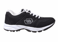 Sport Shoes and Sneakers Supplier