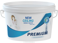 Long Life Premium White Paint for Ceiling