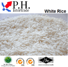 Have You Ever Eat White Rice Thailand