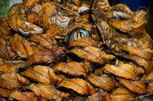 Dry Fish and All kinds of Sea Fish dried