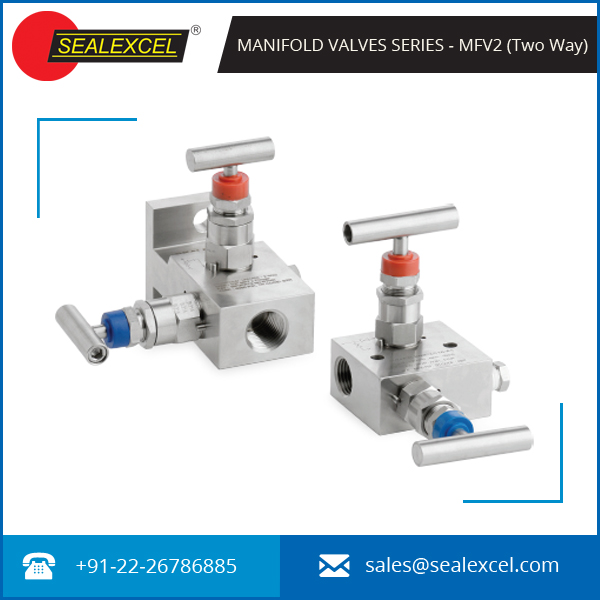 Best Quality Two Way Manifold Valve for Differential Pressure Instruments