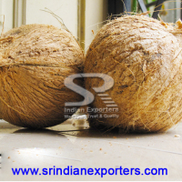 Pollachi Brown coconut supplier