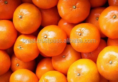 Fresh citrus fruits 2016/Pongkam/ Lokam/Pakistan oranges/Mandarin oranges/Kinnow
