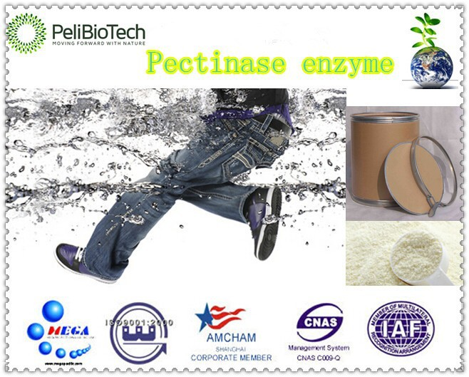 High Activity ready made pectinase enzyme with Manufacturer supply mainly used in textile