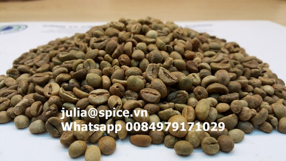 Unwashed robusta coffee bean 2017 new harvest (E):julia@spice.vn Whatsapp 0084979171029