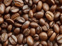 Fresh Green Arabica Coffee Bean