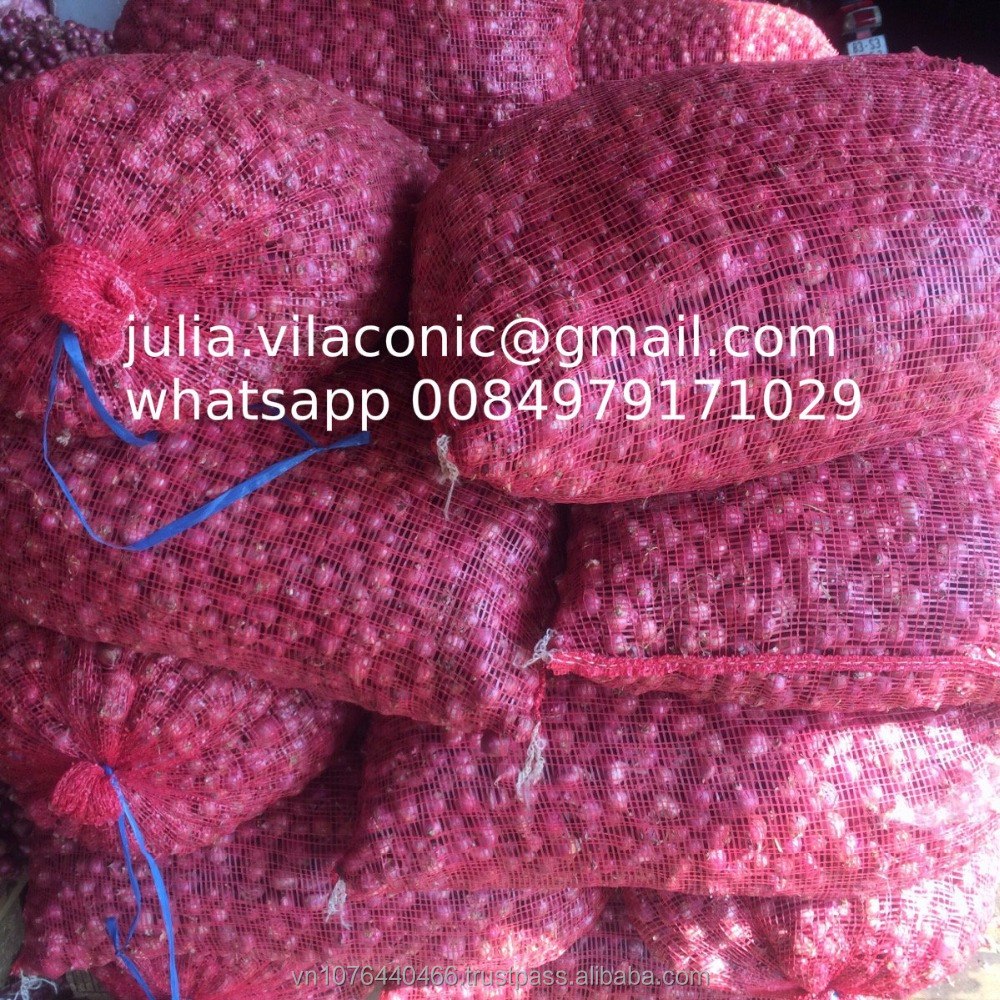 fresh small size shallot/high quality (Phone: +84979171029//Email: julia.vilaconic@gmail.com)
