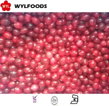 IQF Frozen cranberry whole High Quality best price for sale