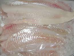 FROZEN SALMON, ATLANTIC (Salmo salar) FILLET SEA FOOD FISH