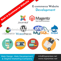 Custom Shop & Attractive Shopping Cart Features Using B2B Web Development Portal