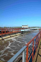 Treatment of Pulp and Paper Mill Effluent using Beneficial microbes