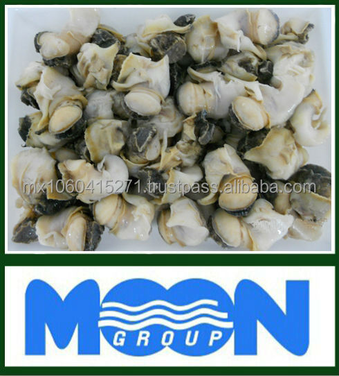 frozen whelk meat(conch meat)from Mexico