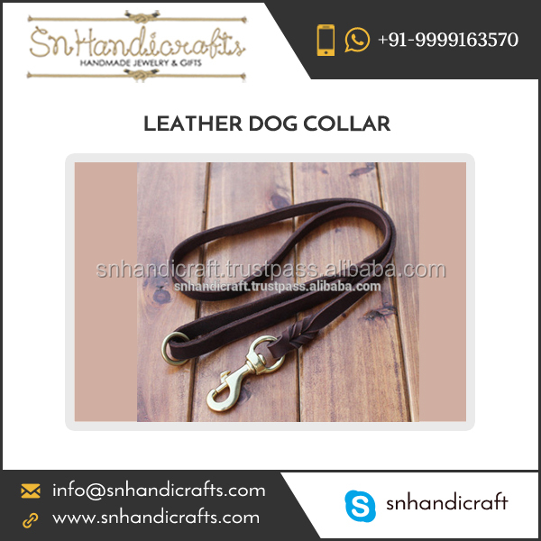 High in Demand Leash Dog from Top Ranked Supplier