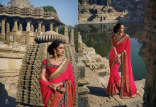 Kanchipuram silk saree / Bridal saree blouses designs / JHand work saree border designs