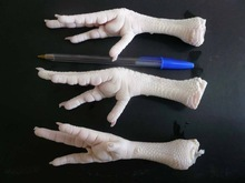 Cheap Halal Frozen Chicken Feet / Paws