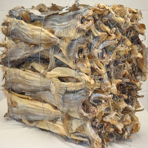 Top Quality Grade A Dried Stock Fish ,Dried Fish