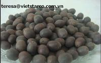 Dried black/ red/ white lotus seed at the best price In Vietnam