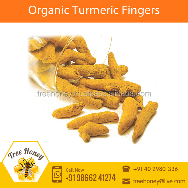 Fresh Dried Turmeric Finger Available at Best Price