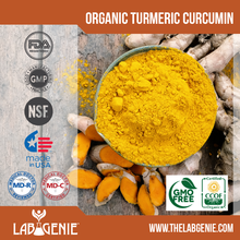 Organic Turmeric Curcumin (Private Label/OEM/White Label or Stock Brands Available)