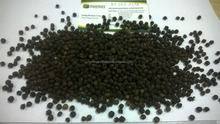 Vietnam BEST DEAL 2016 for black pepper buyers 550G/L FAQ/Clean (Skype: hanfimex08)