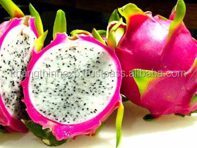 dragon fruit best price from viet nam