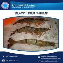 Widely Demanded Fresh and Natural Black Tiger Shrimps from Trusted Exporter