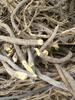 Licorice / Liquorice roots