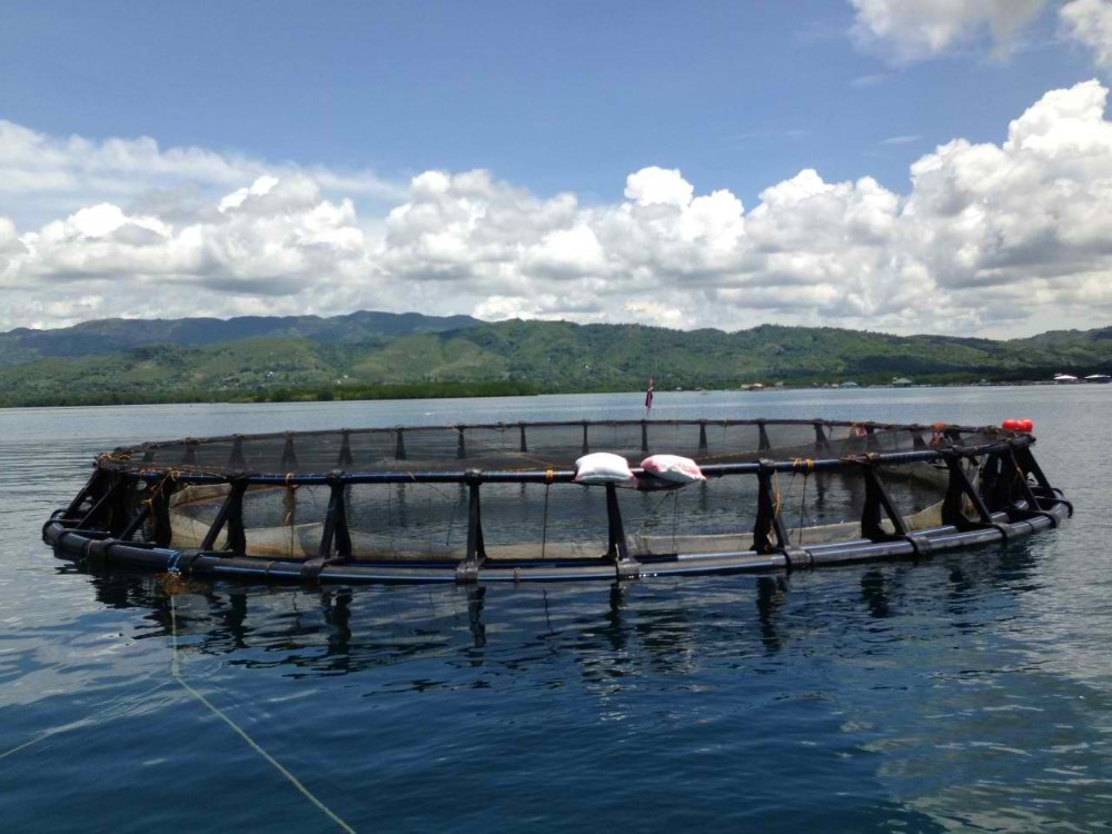 High Quality and Eco-friendly fish farming cu cage made in Japan