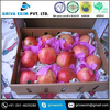 Best Low Price Pomegranate From Manipur