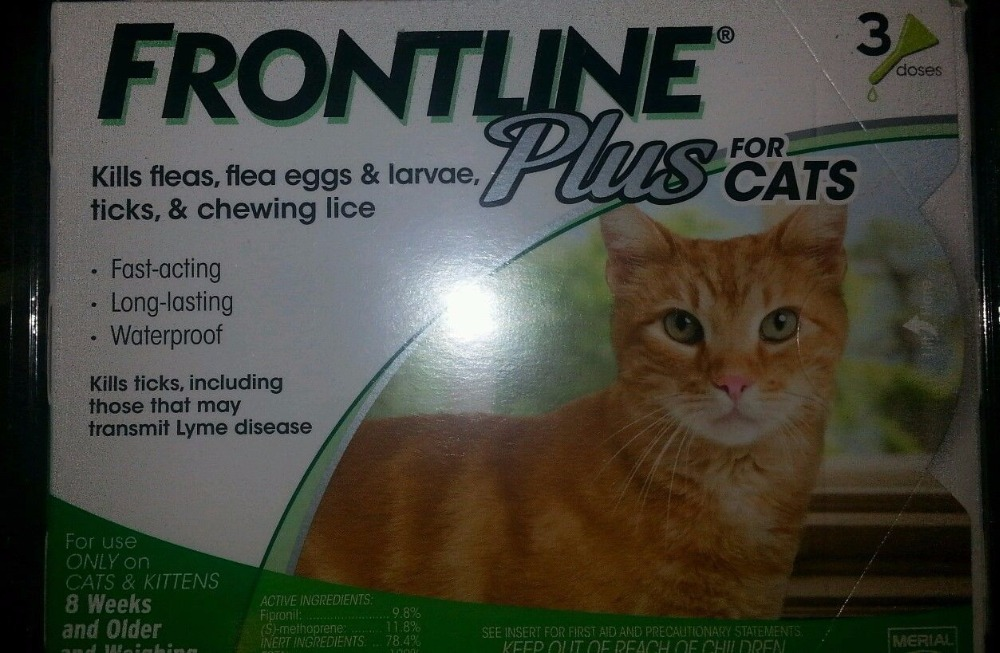 Frontline Plus Flea & Tick Treatment for Cats & Kittens (8 WEEKS AND ABOVE)