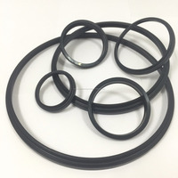 Parker Wiper Seal Profile A1 NBR