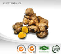Thai herbal PLAI Essential Oil : ISO, GMP Certified : High Quality Best Price